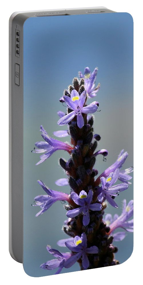 Flower Photography Portable Battery Charger featuring the photograph Flowers By The River by Neal Eslinger