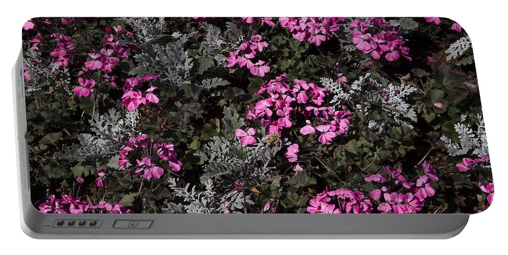 Flower Portable Battery Charger featuring the photograph Flowers Dallas Arboretum V16 by Douglas Barnard