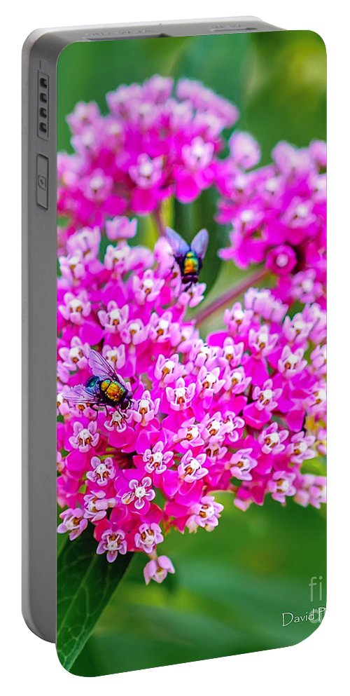 Flower Portable Battery Charger featuring the photograph Flowers In A Purple Heart by David Perry Lawrence
