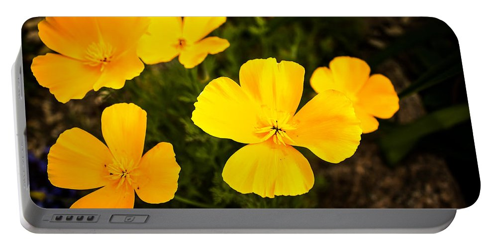 Flowers Portable Battery Charger featuring the photograph Flowers In The Garden by John Lee