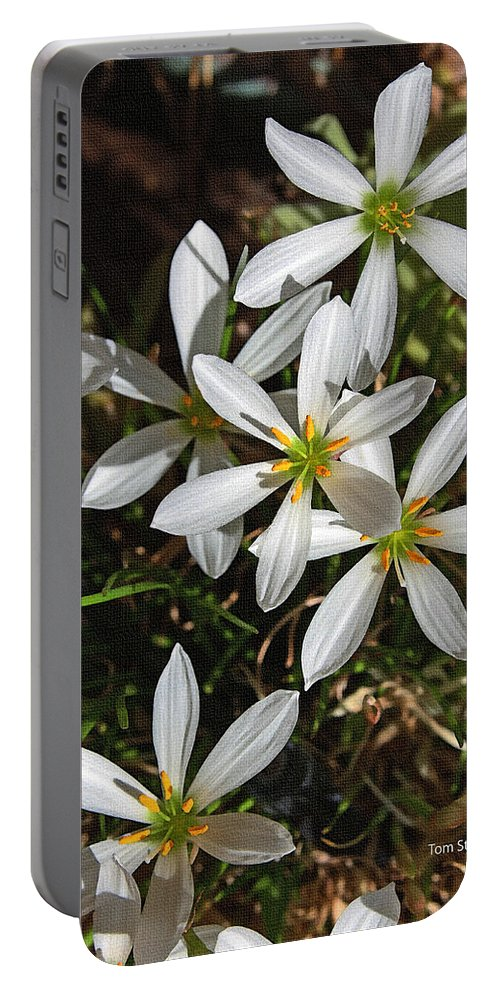 Flowers In The Pot Portable Battery Charger featuring the photograph Flowers In The Pot by Tom Janca