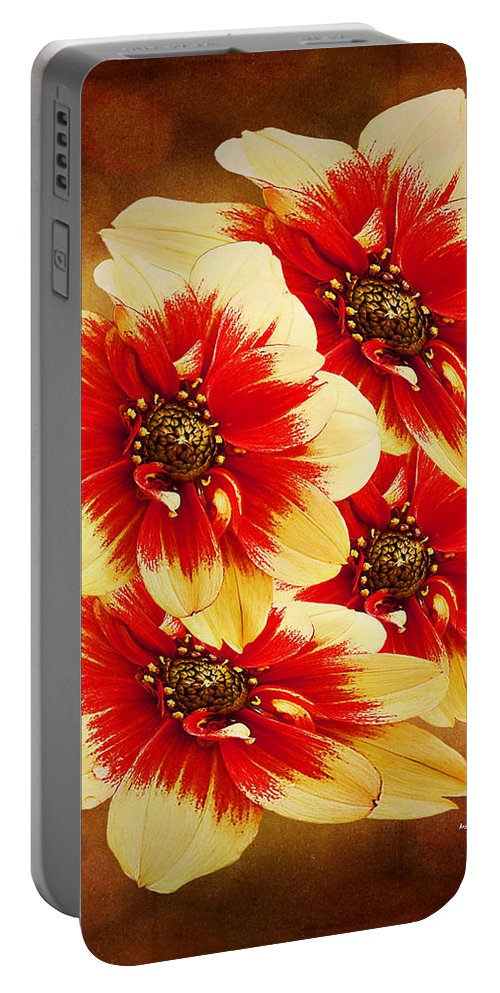 Flower Portable Battery Charger featuring the photograph Flowers Of Flowers by Angela Stanton