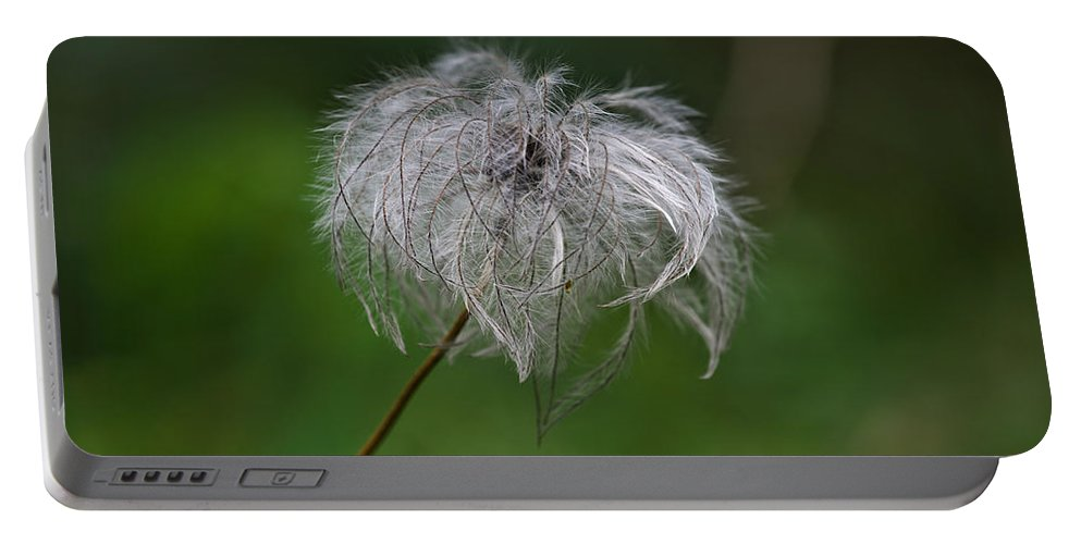 Abstract Portable Battery Charger featuring the photograph Fluffy by Ivan Slosar