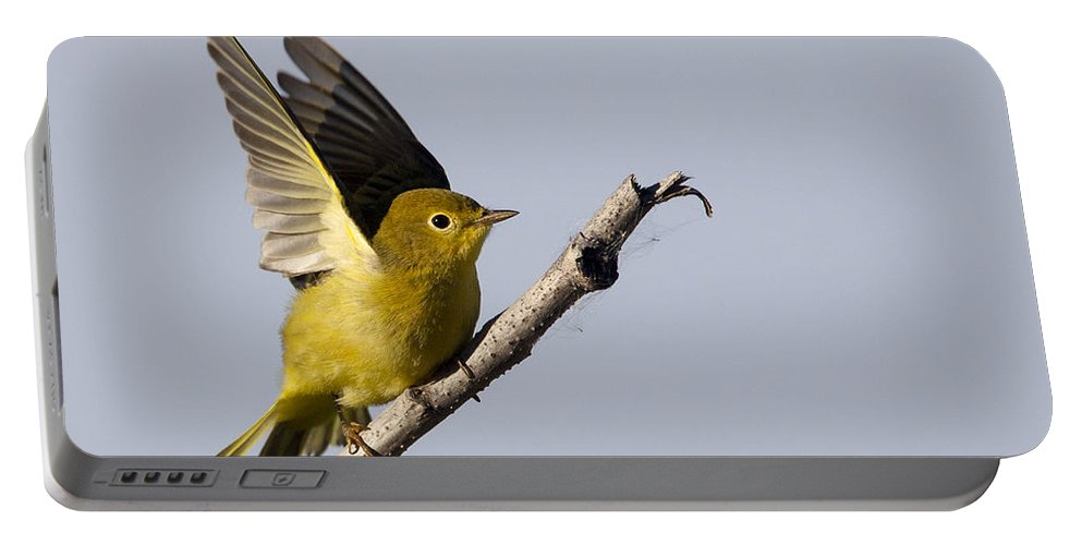 Doug Lloyd Portable Battery Charger featuring the photograph Fly Away by Doug Lloyd
