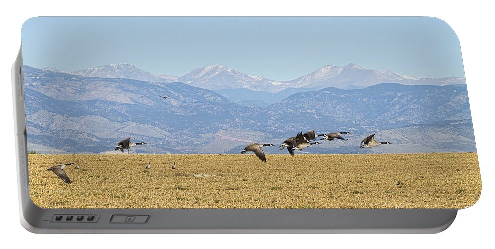 Cackling Goose Portable Battery Charger featuring the photograph Flying Canadian Geese Rocky Mountains 2 by James BO Insogna