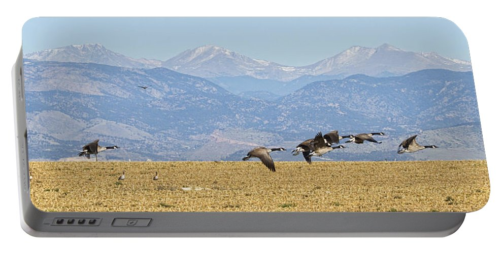 Cackling Goose Portable Battery Charger featuring the photograph Flying Canadian Geese Rocky Mountains Panorama 2 by James BO Insogna