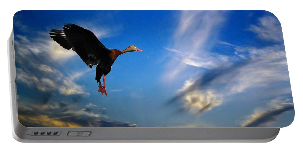 Flying Portable Battery Charger featuring the photograph Flying Duck by Savannah Gibbs
