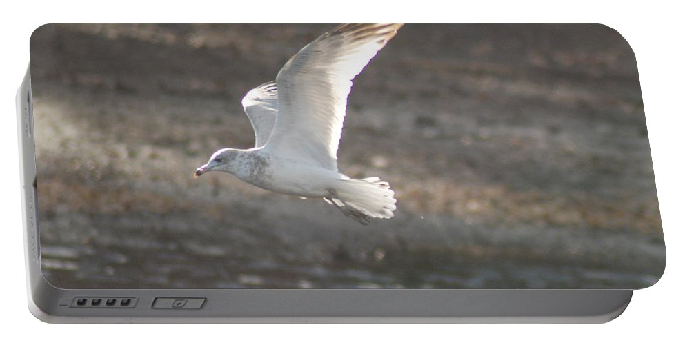 Seagull Portable Battery Charger featuring the photograph Flying Free by Richard Bryce and Family