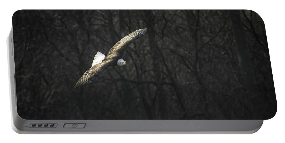 American Bald Eagle Portable Battery Charger featuring the photograph Flying The River by Thomas Young