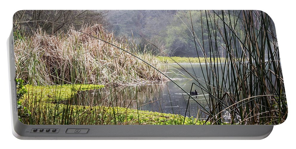 American Coot Portable Battery Charger featuring the photograph Foggy Lake by Kate Brown