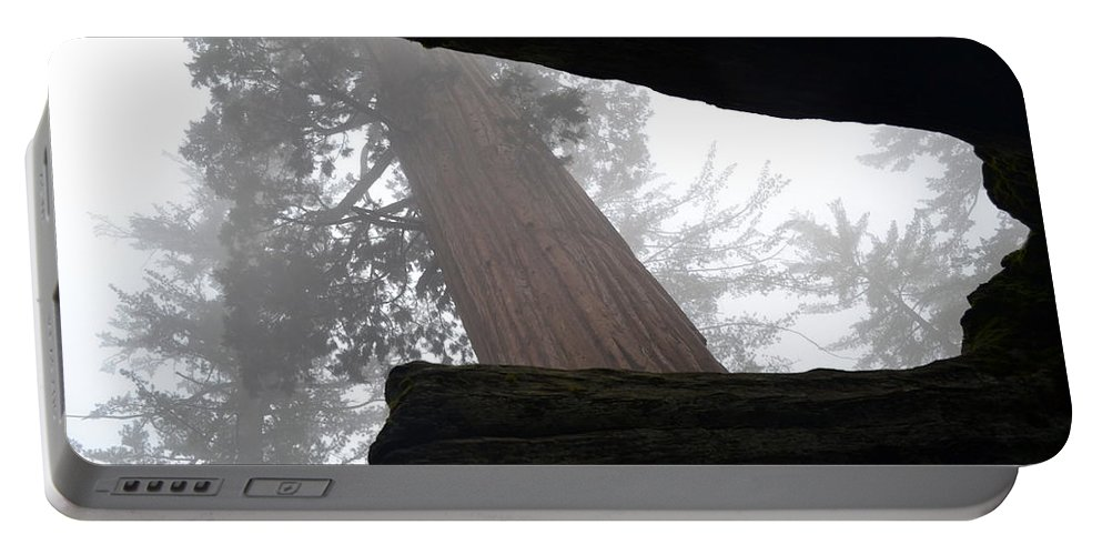 Sequoia Portable Battery Charger featuring the photograph Foggy Morning by Christine Owens