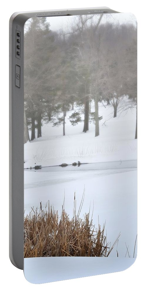 Nature Portable Battery Charger featuring the photograph Foggy Pond by Kathy McCabe