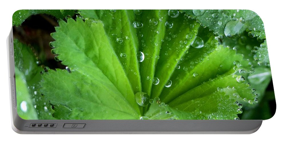Outdoors Portable Battery Charger featuring the photograph Folded Rain by Charles Ford