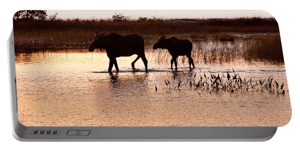 Sabao Portable Battery Charger featuring the photograph Following Mom by Brent L Ander