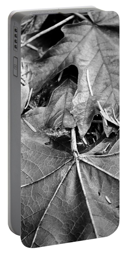 Street Photographer Portable Battery Charger featuring the photograph Foraged Insights by The Artist Project