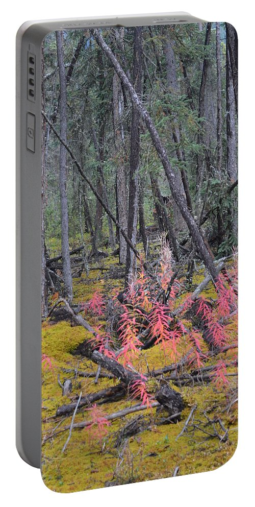 Forest Portable Battery Charger featuring the photograph Forest Fire by Brian Boyle