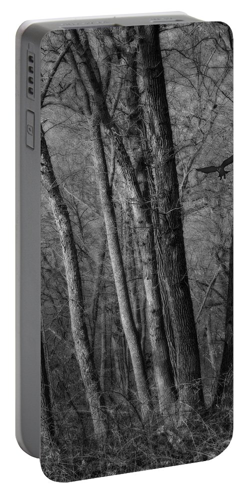 Forest Portable Battery Charger featuring the photograph Forest Flight by Nikolyn McDonald