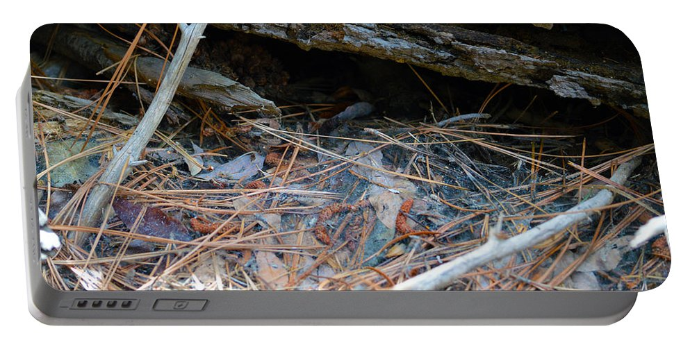 Nevada Portable Battery Charger featuring the photograph Forest Floor 2 by Brent Dolliver