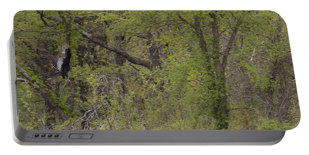 Great Blue Heron Photographs Portable Battery Charger featuring the photograph Forest Glimpse by Vernis Maxwell