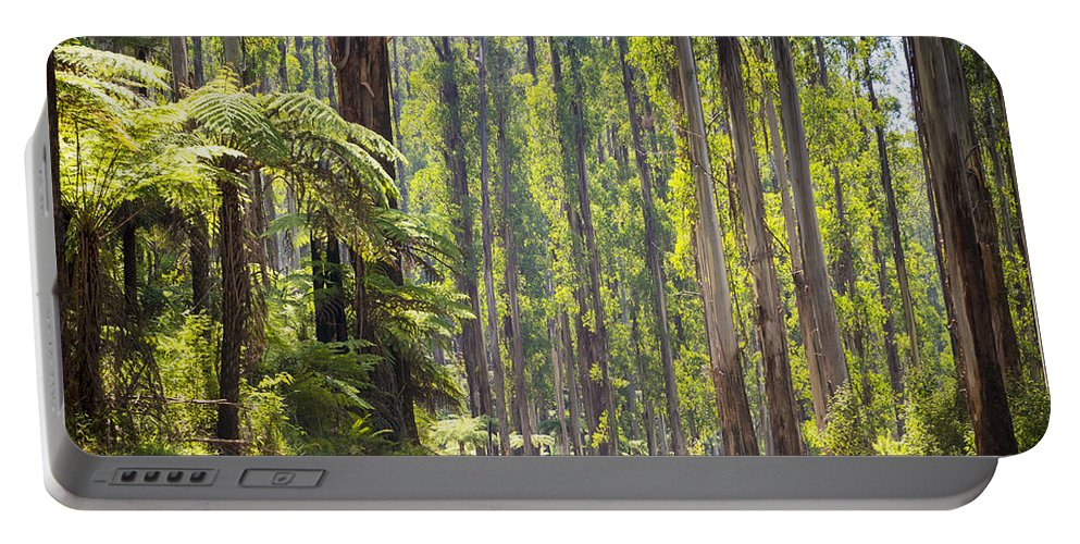 Black Portable Battery Charger featuring the photograph Forest Road by Tim Hester