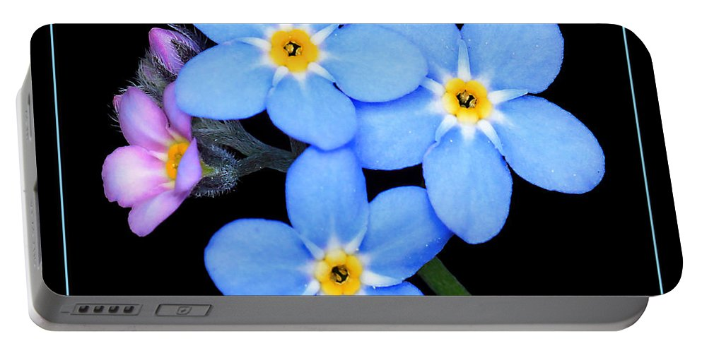 Forget-me-not Portable Battery Charger featuring the photograph Forget-me-nots by Carolyn Derstine