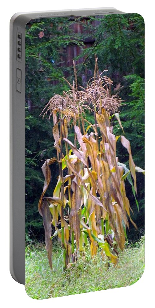 Corn Stalks Portable Battery Charger featuring the photograph Forgotten Corn Stalks by Elizabeth Dow