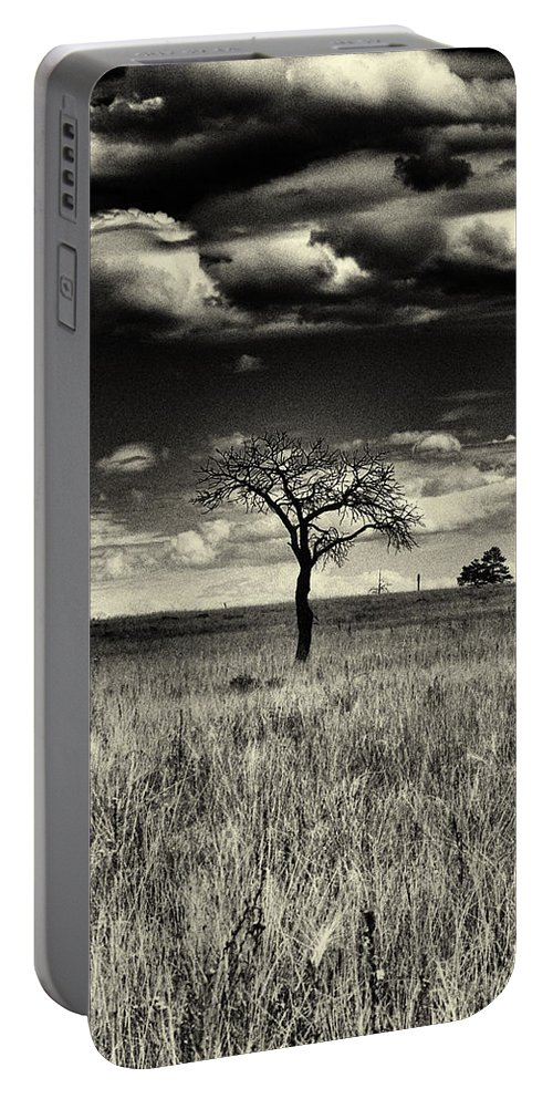 Buffalo Park Portable Battery Charger featuring the photograph Forgotten Tree by Joshua House