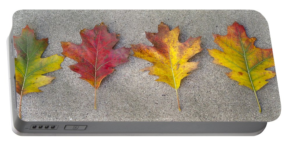 Leaves Portable Battery Charger featuring the photograph Four Autumn Leaves by Lynn Hansen