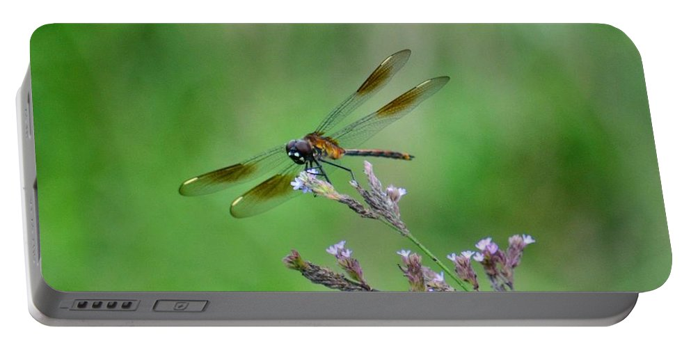 Four-spotted Pennant Portable Battery Charger featuring the photograph Four-spotted Pennant by Maria Urso