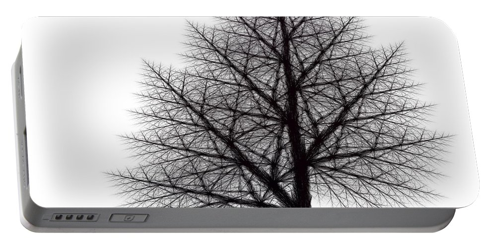 Fractal Portable Battery Charger featuring the digital art Fractal Essence Of A Tree by Richard Ortolano