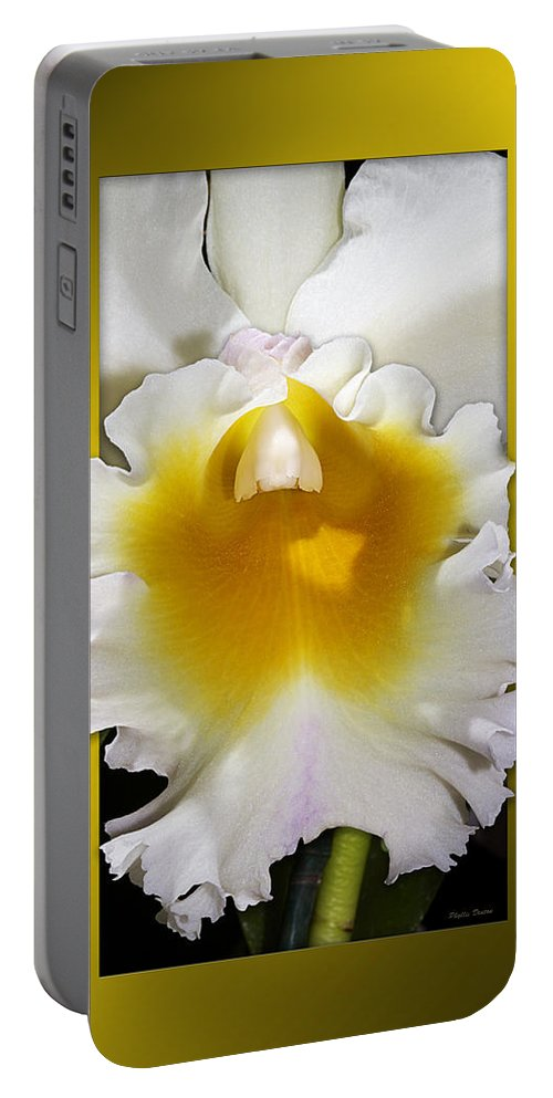 Orchid Portable Battery Charger featuring the photograph Framed White Orchid by Phyllis Denton