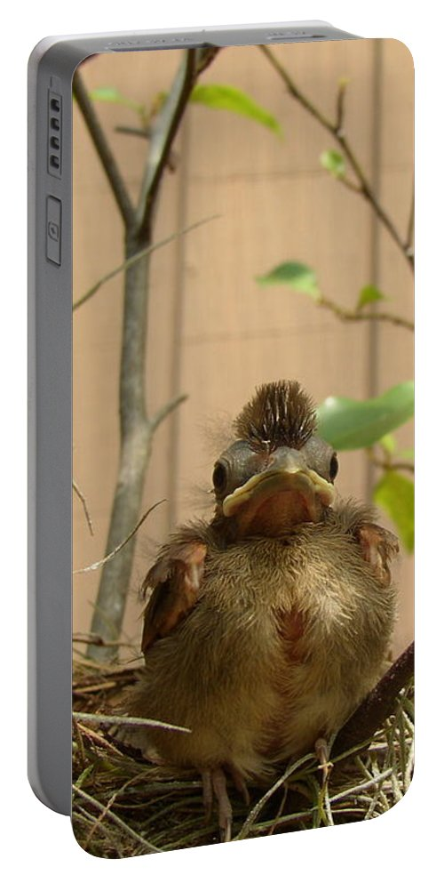 Nature Portable Battery Charger featuring the photograph Fred by Nancy Worrell