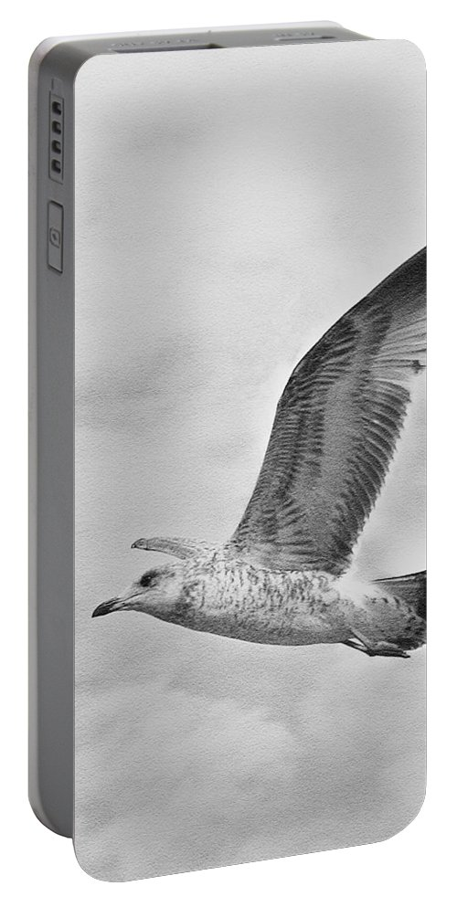 Seagull Portable Battery Charger featuring the photograph Free As A Bird by Susan McMenamin