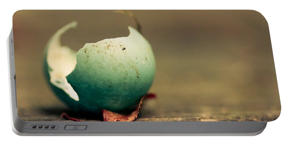 Egg Portable Battery Charger featuring the photograph Free by Shane Holsclaw