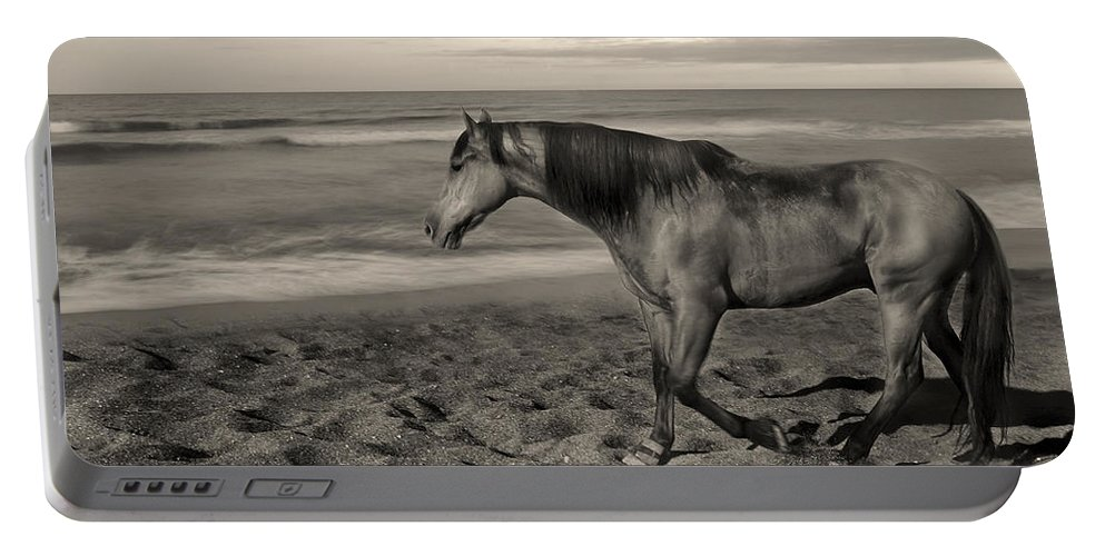 Free Portable Battery Charger featuring the photograph Freedom by Gina Dsgn