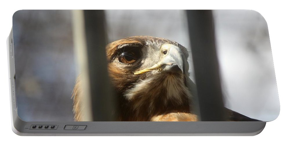 Birds Portable Battery Charger featuring the photograph Freedom Isn't Free by Nunweiler Photography