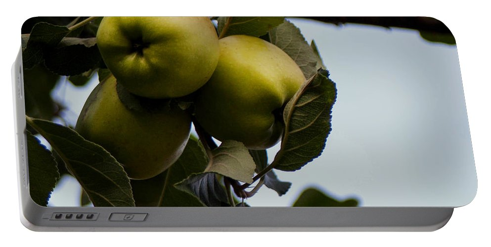 Fresh Fruit Portable Battery Charger featuring the photograph Fresh Fruit by Mechala Matthews