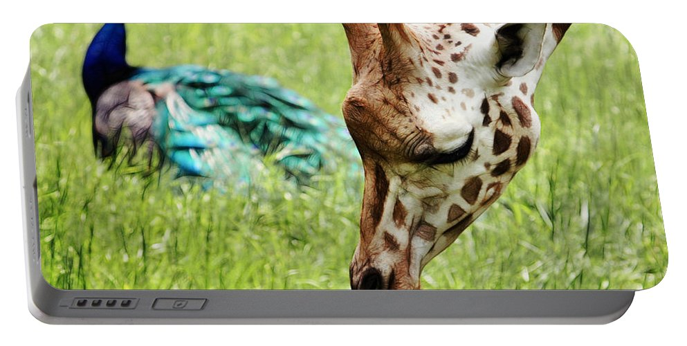 Giraffe Portable Battery Charger featuring the photograph Friendship by Nishanth Gopinathan