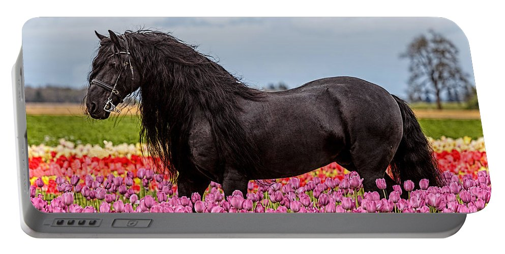 Friesian Fleur Portable Battery Charger featuring the photograph Friesian Fleur by Wes and Dotty Weber