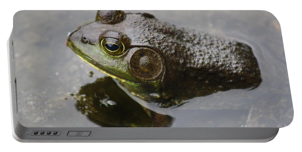 Frog Portable Battery Charger featuring the photograph Frog by Joseph Marquis