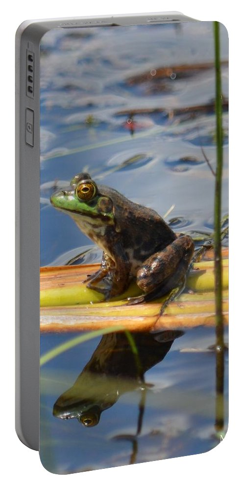 Froggy Reflections Portable Battery Charger featuring the photograph Froggy Reflections by Maria Urso
