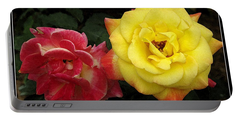 Rose Portable Battery Charger featuring the photograph Red To Yellow by James C Thomas