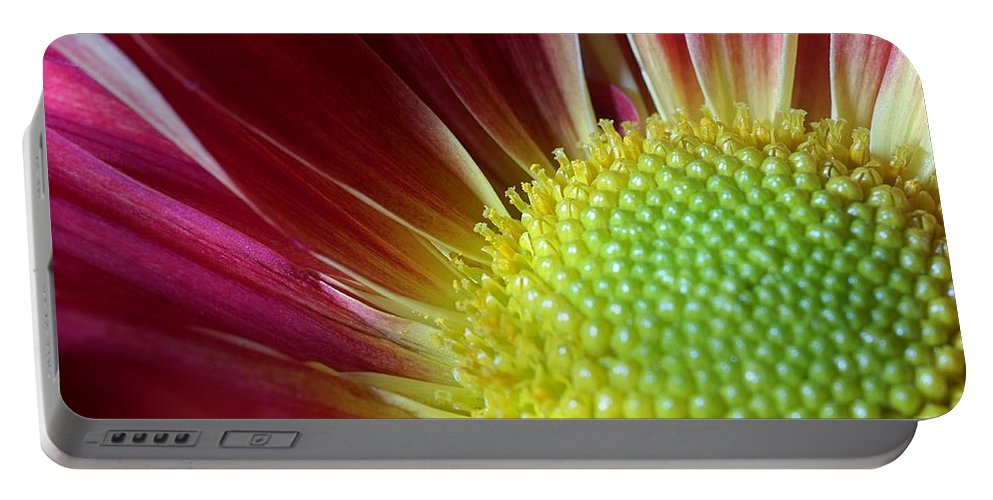 Botanical Portable Battery Charger featuring the photograph From The Florist by Joe Kozlowski