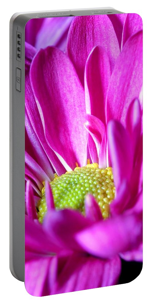 Flower Portable Battery Charger featuring the photograph From The Florist Too by Joe Kozlowski