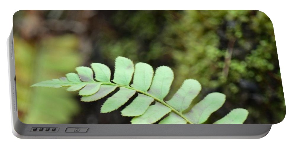 Frond Portable Battery Charger featuring the photograph Frond by Maria Urso