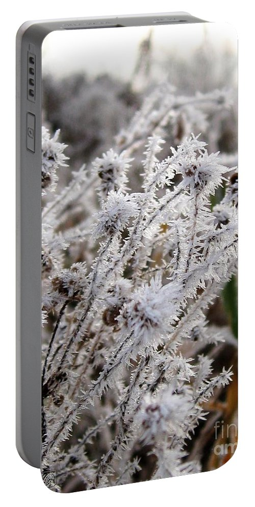 Mccombie Portable Battery Charger featuring the photograph Frost In The Field by J McCombie