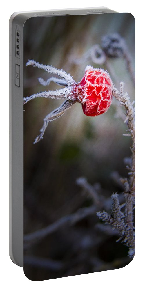 Frosted Portable Battery Charger featuring the photograph Frosted by Jean Noren