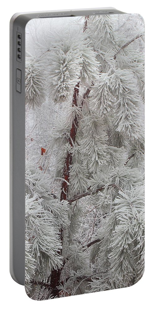 Frosted Pine Portable Battery Charger featuring the photograph Frosted Pines by Michael Eingle