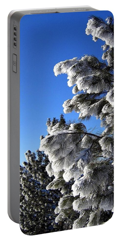 Frost Portable Battery Charger featuring the photograph Frosty Limbs by Will Borden