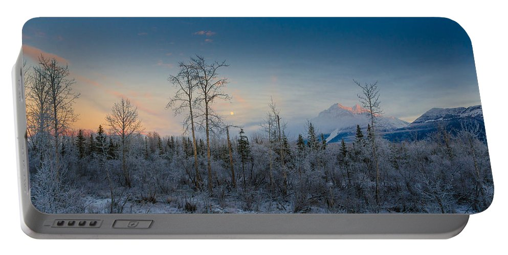 Frozen Portable Battery Charger featuring the photograph Frosty by Nikolai Martusheff